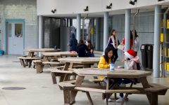 The School Lunch Crisis