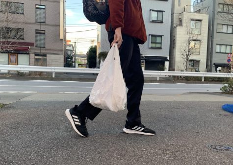 Coming Soon: A Mandatory Fee for Plastic Bags